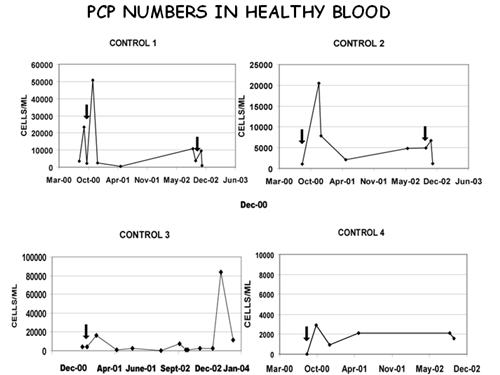 PCP Numbers in Healthy Blood