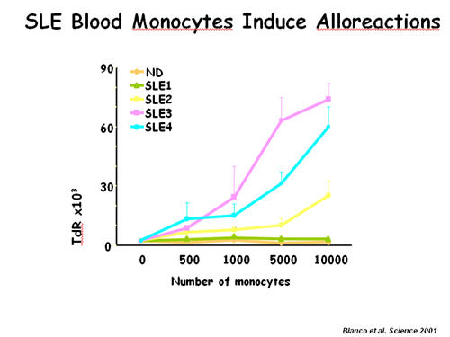 SLE Blood Monocytes Induce Alloreactions