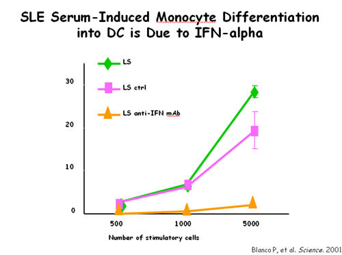 SLE Serum-Induced Monocyte Differentiation into DC is Due To IFN-Alpha